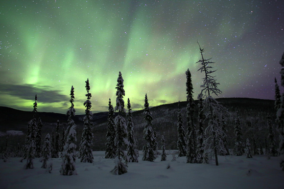 Aurora, Chatanika Valley, Alaska